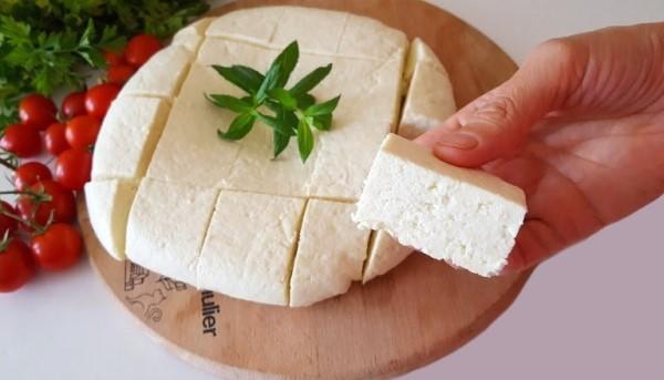 evde peynir yapma